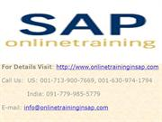 SAP XI Online Training and Placement - SAP XI DEMO