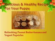 Delicious & Healthy Pupsicle Recipe For Your Puppy