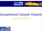 Carpet Cleaning company long island New York-SteamPro