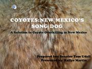Powerpoint Coyote