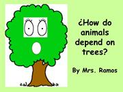 Animals depend on trees