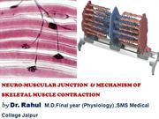 Neuro Muscular junction and Skeletal muscle contraction