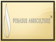 Pegasus Agriculture & Its Soilless Farming To Serve A Hungry World