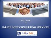 H Line Soft  Consulting Services