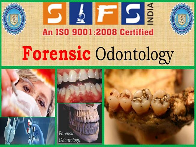 Advance Courses Of Forensic Odontology In Sifs India Authorstream