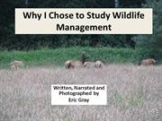Why I Chose to study wildlife management
