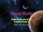 Virtual Worlds ( The Second Life Experie