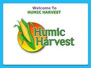 Get a Supply of WEFHAS Humic Acid for an Increased Agricultural Yield