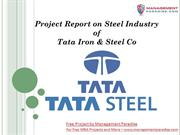 Project Report on Steel Industry of Tata Iron & Steel Co