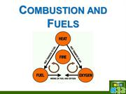 Combustion and fuel class 8(darpan)(Mayur)(A)