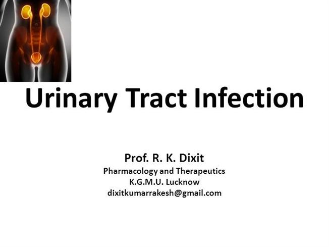 Urinary tract infections authorstream chemotherapy of urinary tract infection toneelgroepblik Image collections