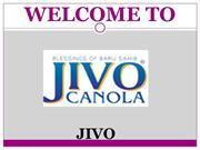 Jivo Canola Oil Best Cooking Oil
