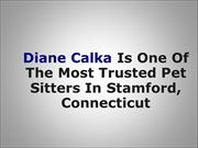 Diane Calka Is One Of The Most Trusted Pet Sitters In Stamford, Connec
