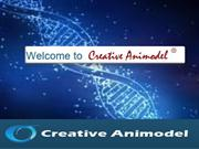 creative-animodel-inroduction-to-a-biomedical-research-organization