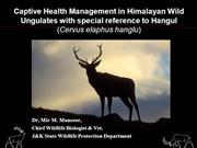Wildlife diseases