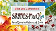 Best Seo Company in India,Top Seo Company Skynes-MarQ