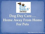DOG DAY CARE……HOME AWAY FROM HOME FOR PETS