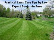 Practical Lawn Care Tips by Lawn Expert Benjamin Pure