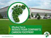 Carbon Offset Projects to Lower Carbon Level