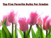 Top Five Flower Bulbs For Graden