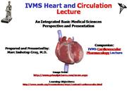 IVMS-CV Comprehensive Overview Heart and