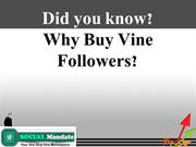 How to Gain Vine Followers in Large Number