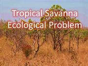 Ecological Problem of Savanna
