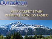Keep Carpet Stain Removal Process Easier