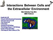 IVMS-Cell Bio- Internal Enviorment Cell