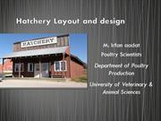 Hatchery Layout and design 2