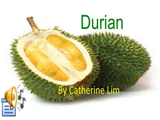 Durian authorstream ccuart Image collections
