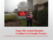 Naperville Animal Hospital - Cat Friendly Practice in Naperville