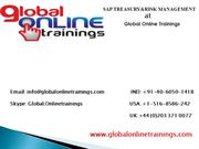 SAP TREASURY AND RISK MANAGEMENT Training | Global Online Trainings