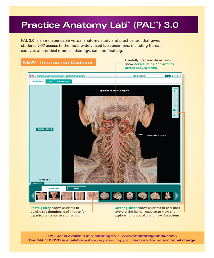 Ausgezeichnet Human Anatomy Laboratory Manual With Cat Dissections ...