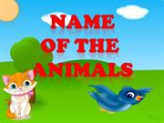 NAME OF THE ANIMALS