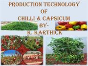 production technology of chilli