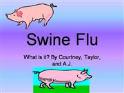 Swine Flu