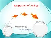 Migration in fishes