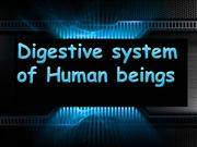 Digestive system of Human beings