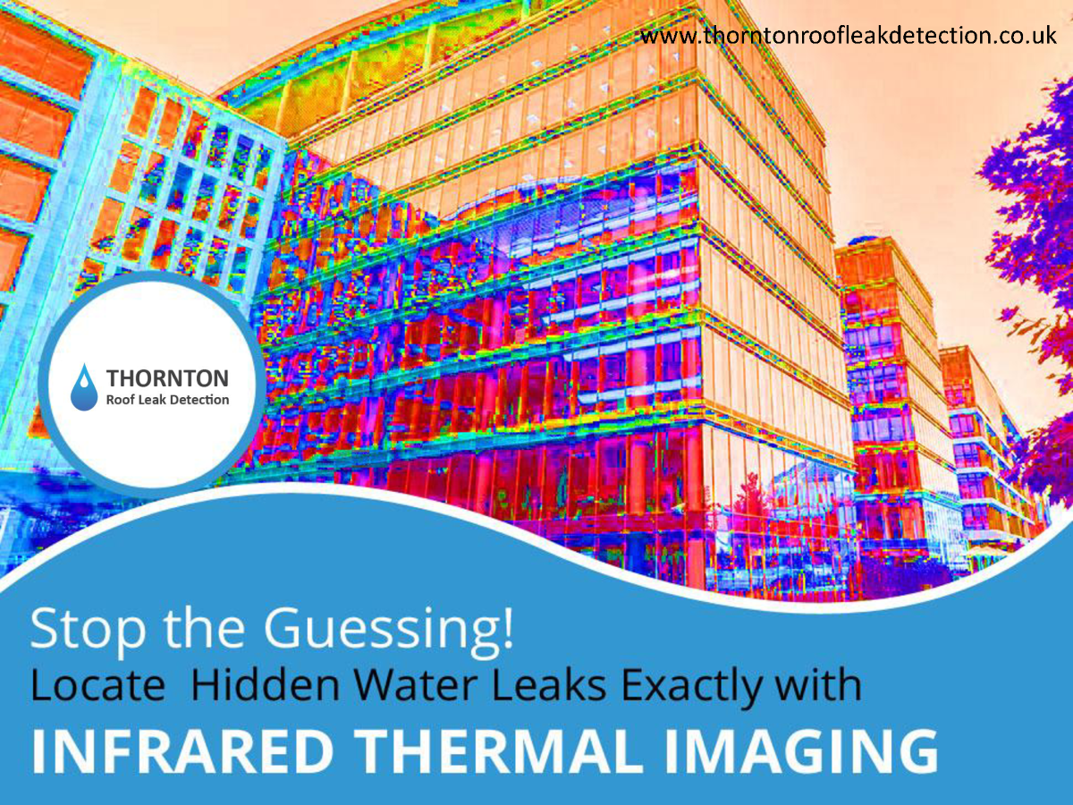 Infrared Thermal Imaging For Effective Leak Detection In