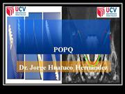 CLASIFICACION DE PROLAPSO GENITAL POPQ
