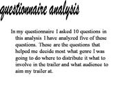 Questionnaire Analysis