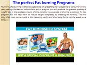 The perfect Fat burning Programs