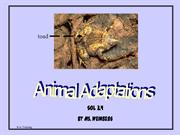 Animal-Adaptations-PPT