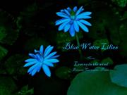 1-COLOR-6  Water Lilies-Blue-Leaves in the wind-Ernesto  Cortazar-Pian