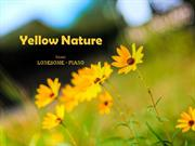 1-COLOR-16  Nature-Yellow-Lonesome-piano