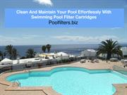 Clean And Maintain Your Pool Effortlessly With Swimming Pool Filter Ca