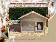 Things to think about in Building a Chicken Coop