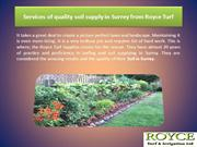 Services of quality soil supply in Surrey from Royce Turf