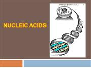 Biology 11 - Nucleic Acids